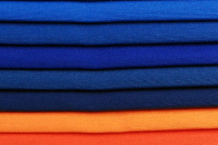 Loneta lisa (2) Carta de colores