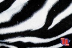 PELO-ANIMALES150-Cebra